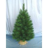 [Vianočný stromček OREGON PINE]