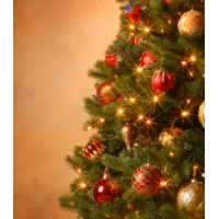 [Vianočný stromček s kompletnou vianočnou výzdobou]