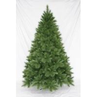 [Vianočný stromček LONGNEEDLE PINE]