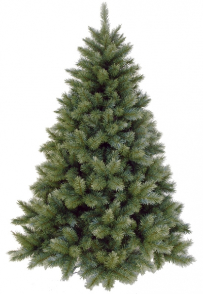 Vianočný stromček OREGON CEDAR