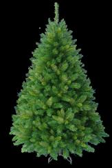 [Vianočný stromček COLUMBUS  ]